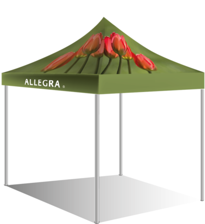Abbotsford Customized Canopy Tent Design