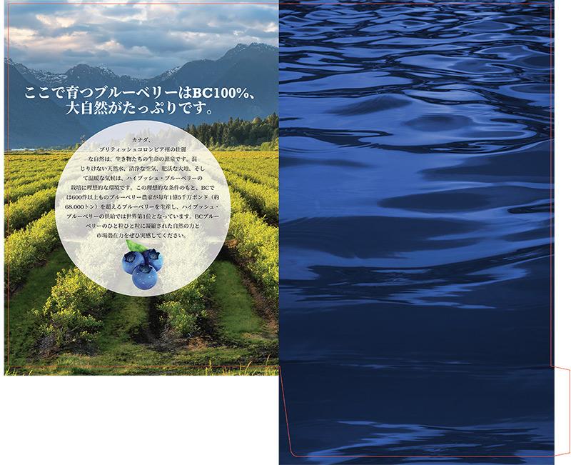 Abbotsford presentation folder print